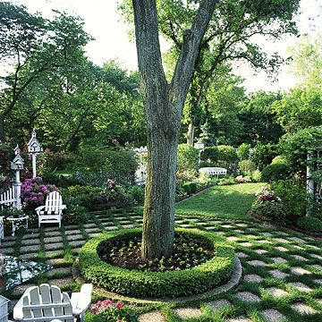 17 best ideas about hedges landscaping on pinterest for Compound garden designs