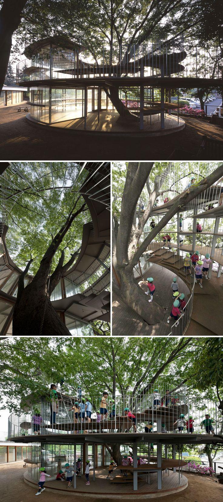 Escola japonesa al voltant d'un arbre