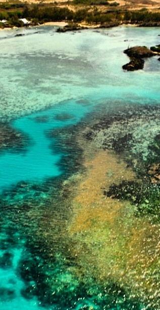 ✮ Colorful Lagoon | Mauritius ✮ (http://www.facebook.com/BeautyOfMauritius)
