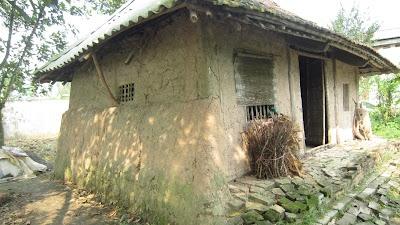 Mái tranh ơi hỡi mái tranh/Trải bao mưa nắng mà thành quê hương (Trần Đăng Khoa)