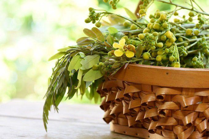 Té de senna.-Té de Senna – Una visión general: El senna, una hierba con compuestos de laxante naturales, se utiliza medicinalmente para conseguir el alivio de la constipación. Ha sido apoyada por la EE.UU. FDA como un laxante de venta libre. Sin embargo, también se ha utilizado como un agente para eliminar las toxinas del cuerpo y estimular la pérdida de peso. El té senna se hace hirviendo las hojas de la hierba senna.  La Senna tiene flores de color amarillo brillante y su árbol crece en el…