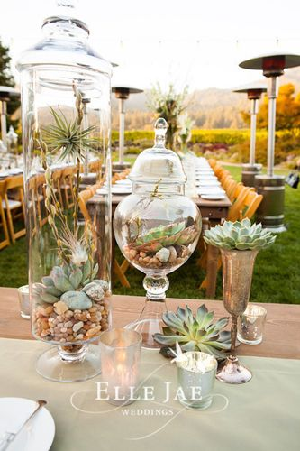 I'm not sure what you have planned for an escort card table, but something like this would be fantastic. I can rent you terrariums in apothecary jars like this, as well as succulents in the pewter pieces.