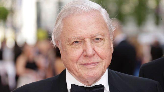 David Attenborough's Planet Earth II arrives on VRT TV