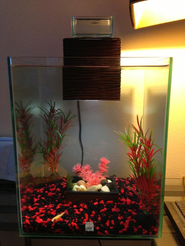 5 Gallon Fish Tank Terrarium 30 Gallon Square Glass