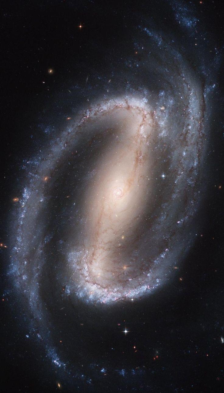 Galaxy NGC 1300