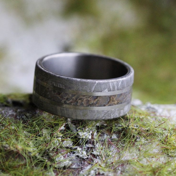 Dinosaur Bone Ring with Meteorite Edges Separated by Two Titanium Pinstripes, Titanium Wedding Band