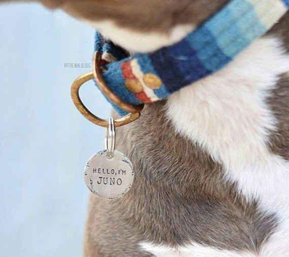 Estas sencillas y elegantes placas de identificación personalizadas para perro.