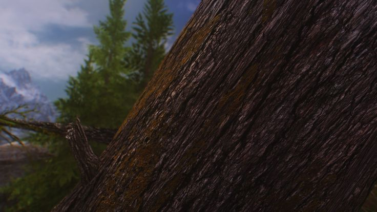 Not sure why I took this shot (super old randomly foind in my pc) but I think it makes for a pretty neat desktop wallpaper! #games #Skyrim #elderscrolls #BE3 #gaming #videogames #Concours #NGC