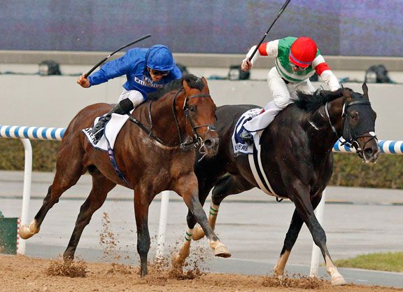 A tremendous duel between two high-class colts saw Thunder Snow (Ire) (Helmet {Aus}) just edge out Epicharis (Jpn) (Gold Allure {Jpn}) to win Saturday's G2 UAE Derby. The two horses had the race to themselves …