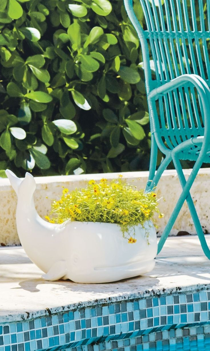 Heu0027s A Strong And Serene Fellow Whou0027s Exclusively Ours, And So Wyatt Whale  Planter Is Feeling Good About Lending His Modern Nautical Charm To Your  Patio, ...