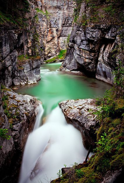 Jasper National Park, the largest national park in the Canadian Rockies