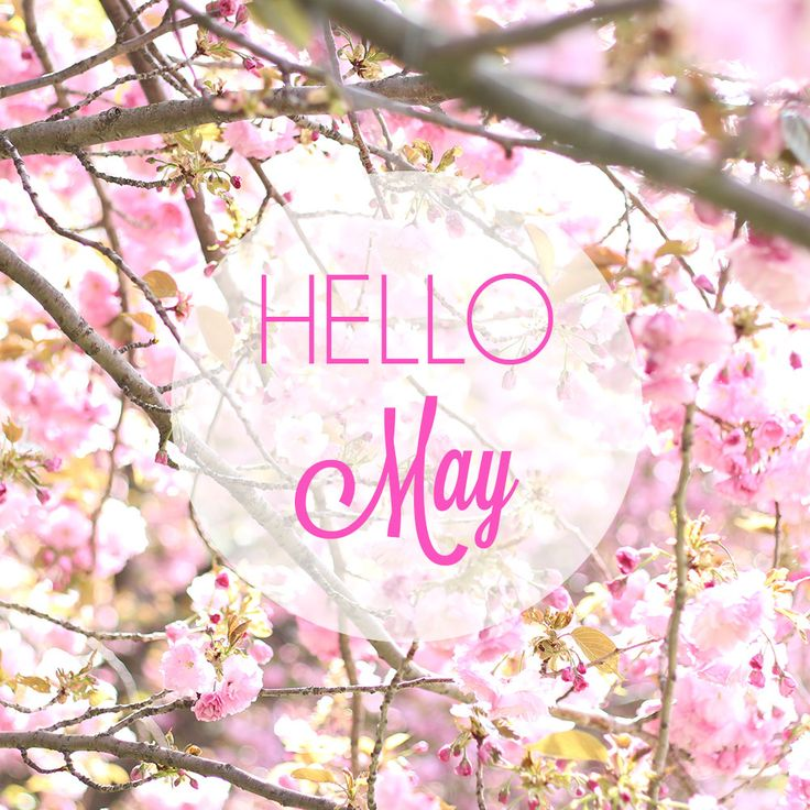 Letter from the Editor Hello May  BLOGBOSS Strange  Charmed Blog  Hello may quotes May