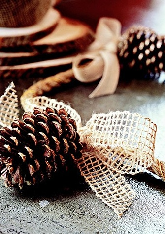 Pine cones hung with burlap and twine