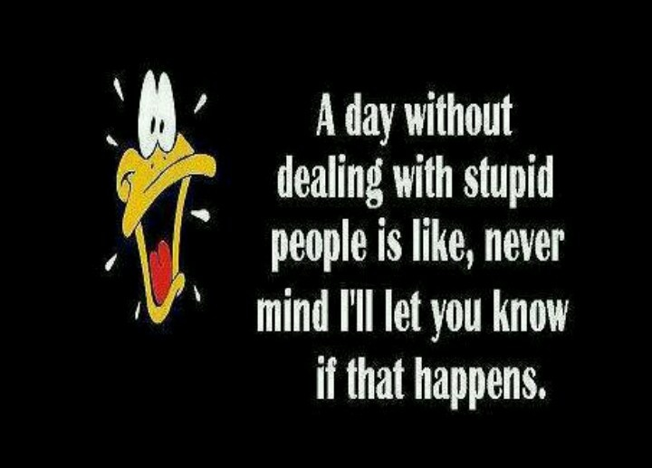 DAFFY DUCK ANALOGY...