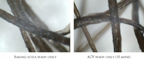 Baking Soda and Apple Cider Vinegar are Not Effective Natural Hair Cleansers!? Microscope Photos Show Surprising Results!