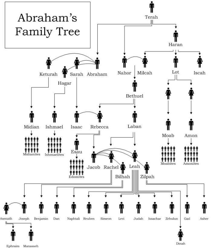make a family tree diagram