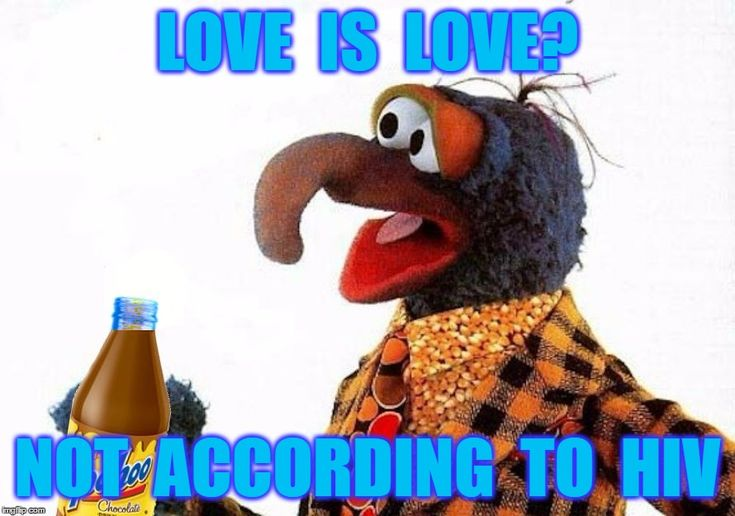 Gonzo Straight Up | LOVE  IS  LOVE? NOT  ACCORDING  TO  HIV | image tagged in gonzo,muppets,sex,gay,lgbt,homosexual | made w/ Imgflip meme maker