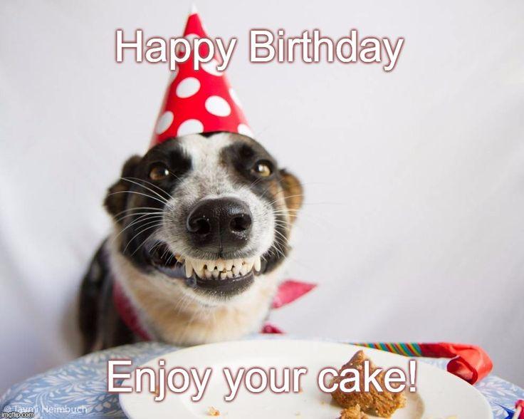 Birthday Dog - ''Happy Birthday. Enjoy your cake!'' [Imgflip meme by Leah B.]  made with ''Birthday Dog'' Meme Generator - Imgflip: https://imgflip.com/memegenerator/71619552/Birthday-Dog