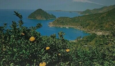 Details about Mt. Fuji From Mito Beach Vintage Unposted Postcard Water Lemon Trees Japan