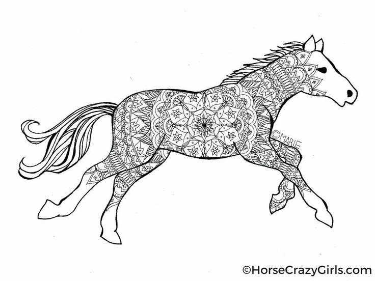 pferd ausmalbilder zum ausdrucken schöne malvorlagen