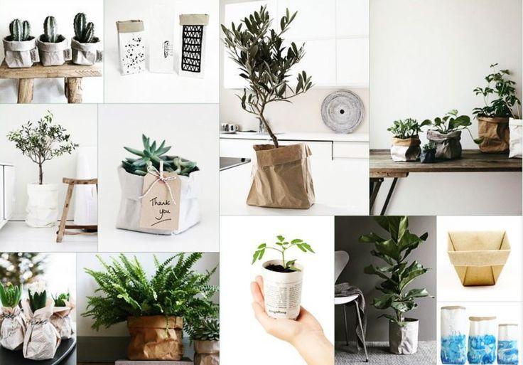 browwar_nieruchomosci#objectoftheday #paperpots #paperbags #paper #flowerpots #flowercovers #flower #plants #greenhome #homeplants #homegarden #homedesign #home #inspiration #interiordesign #interior #decor #instadecor #decorplant #decoration #roominspiration #roomdecor #idea #diy #diypots #diyplants #doityourself #eco #ecohome #ecohomeway