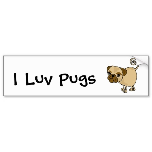 Funny Pug Puppy Dog Cartoon Bumper Stickers #pugs #dogs #pets #funny #animals #bumperstickers #zazzle #petspower