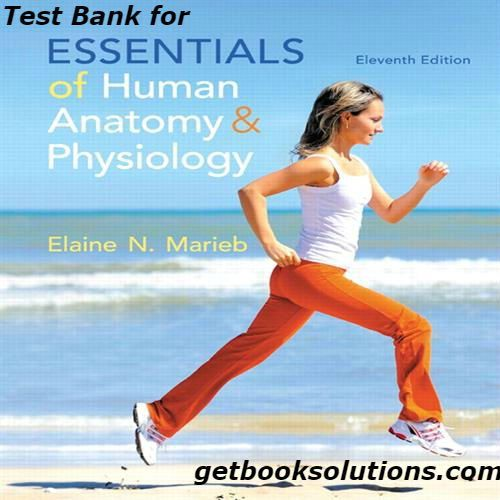 Test Bank For Essentials Of Human Anatomy And Physiology