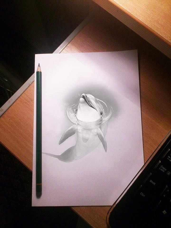 3D dolphin drawing ~ amazing