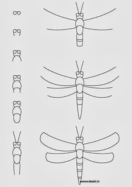 how to draw b 25