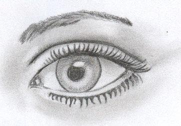tekening oog - Google zoeken