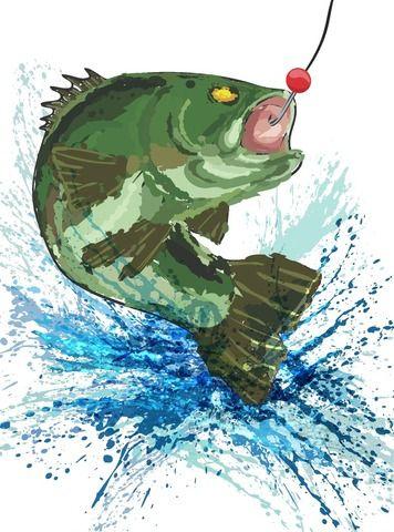Bass Fishing Design