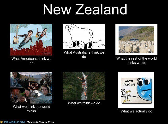 new zealand memes - Google Search