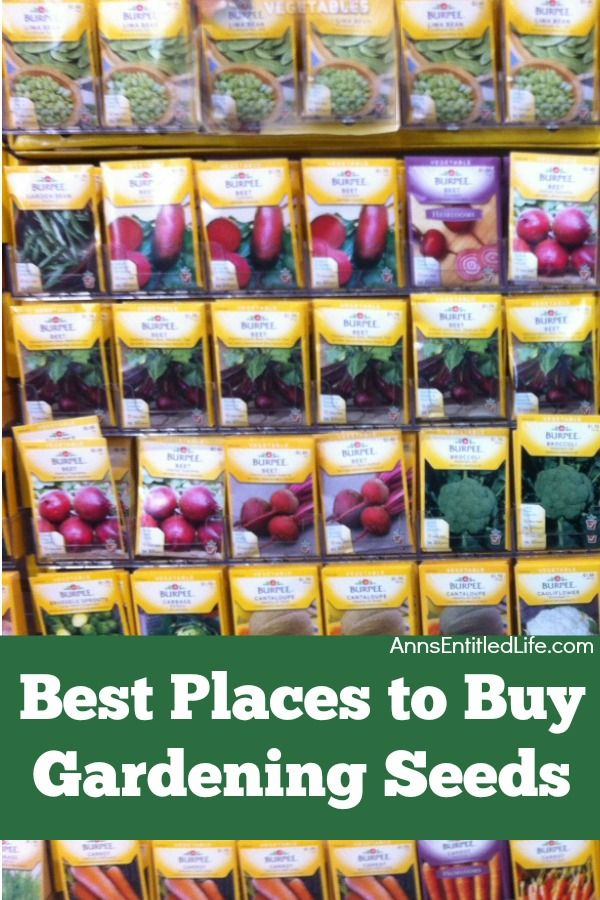 Best Places to Buy Gardening Seeds. This is a list of options for the purchase of gardening seeds locally, as well as the online purchase of your vegetable seeds, flower seeds, and herb seeds