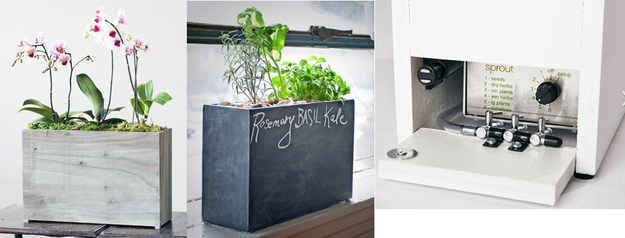 This self-watering and self-feeding hydroponic planter.