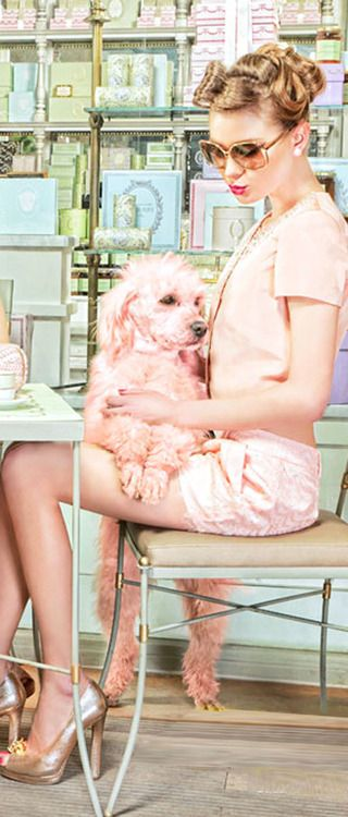 """The Spring Ladies Club"" in Plastik Magazine with Maggie the poodle."