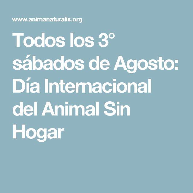 Todos los 3° sábados de Agosto: Día Internacional del Animal Sin Hogar