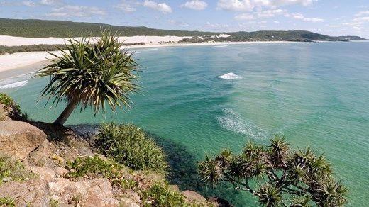 Indian Head på Fraser Islands östra sida!Fraser Island är ön för äventyrslystna backpackers! På världens största sandö finner du sötvatten sjöar där du kan simma utan att vara rädd för hajar eller stora maneter.