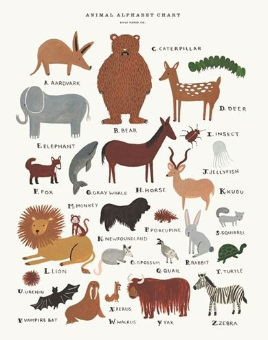 Animal Alphabet Print – Designed by Anna Bond for iconic brand, Rifle Paper Co. Available at www.babycompany.co.uk