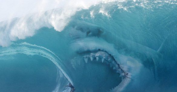 Giant Jaws of Death: Strange Accounts of Modern Megalodon Attacks | Mysterious Universe