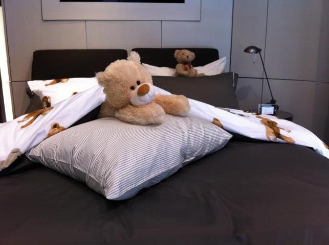 DUXIANA Chicago has teddy bears in their DUX Bed!