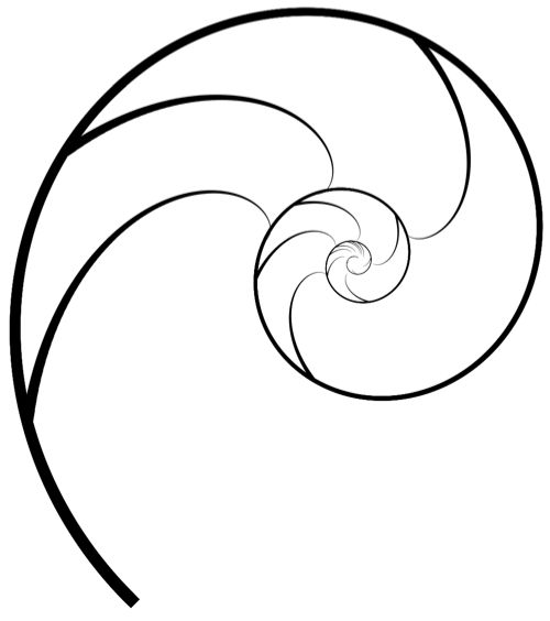 nautilus shell, Golden Ratio, Pantheism