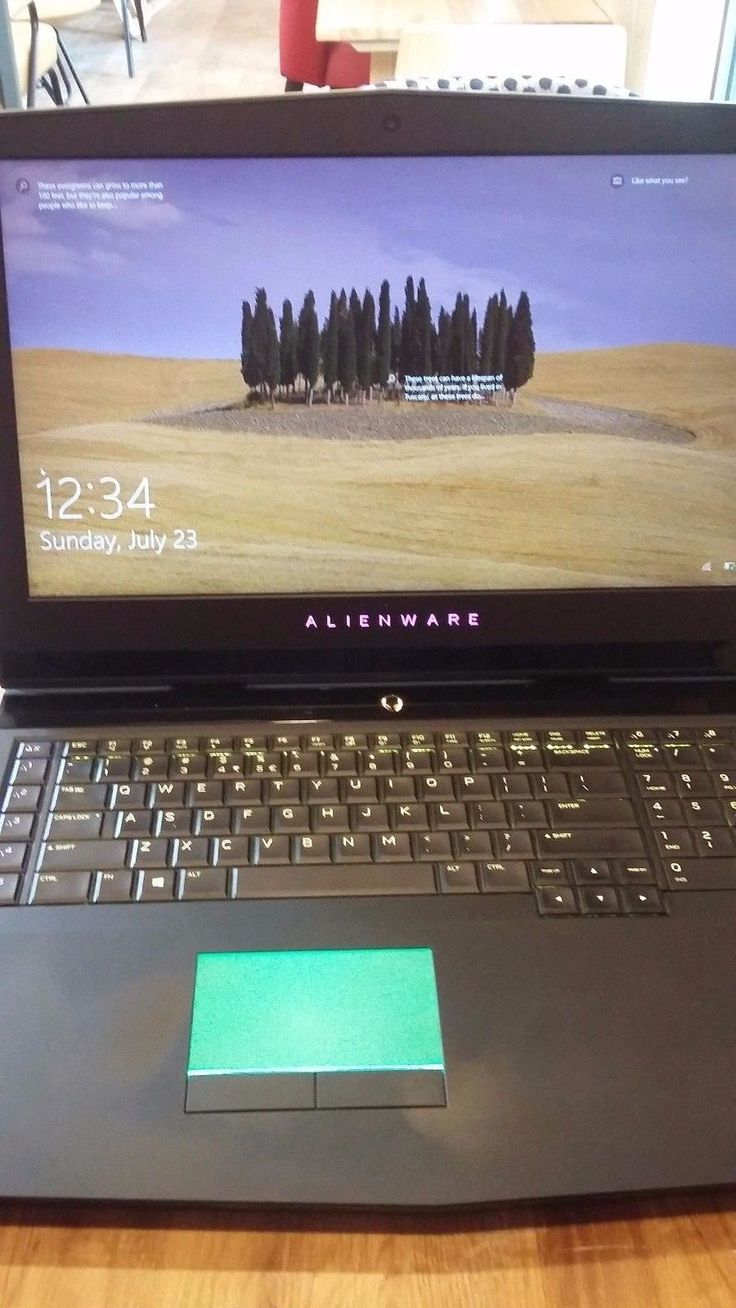 "Alienware 17 R4 Gaming Laptop (17.3"" GTX 1080 1440p QHD 120hz G-Sync Display)"