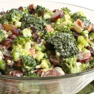 ingredients  SALAD INGREDIENTS: 2 bunches fresh broccoli, cut into bite sized pieces 1 1/2 cups celery, chopped 1 bunch green onions, choppedRead more ›