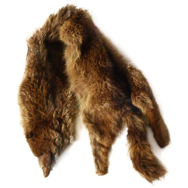 Vintage 20s 30s or 40s brown fox fur stole one size (325 BRL) ❤ liked on Polyvore featuring accessories, scarves, fur, jackets, vintage stole, brown shawl, fox fur shawl, vintage fox stole and brown scarves