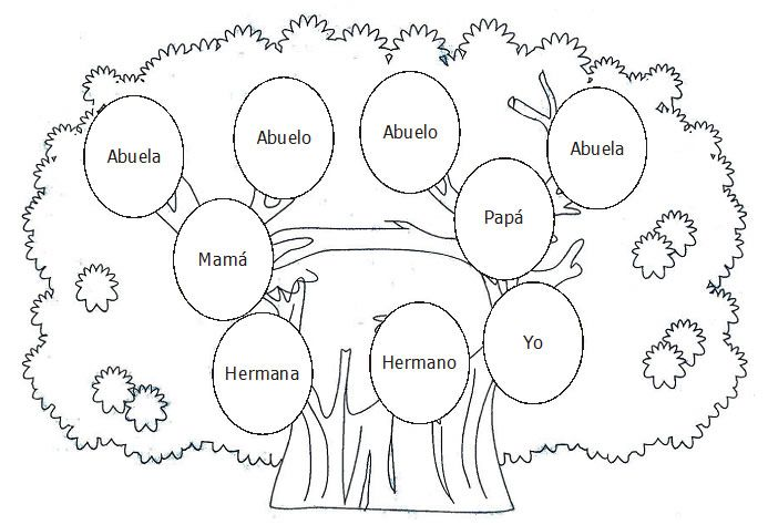 DIBUJOS ARBOL GENEALOGICO PARA INGLES - Imagui