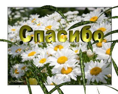 ♥Мини открытки для комментариев GIF♥. Обсуждение на LiveInternet - Российский Сервис Онлайн-Дневников