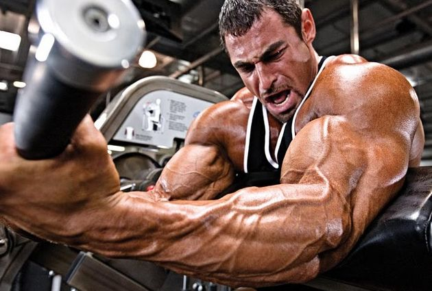 A Tried and True Bodybuilding Program Template | Gyms Day