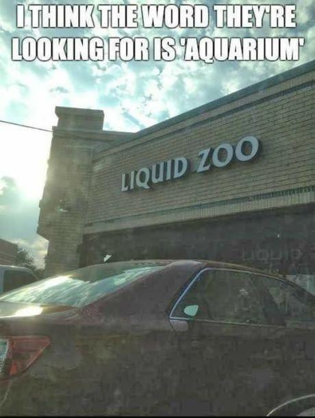 Liquid Zoo https://i.redd.it/72seec14u8d01.jpg