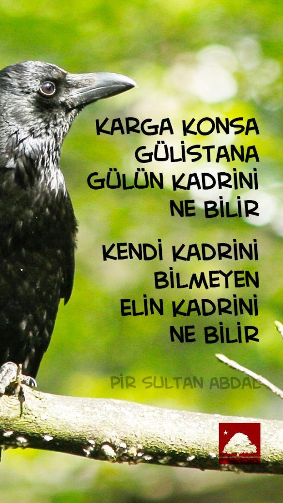 Pir Sultan Abdal : Karga konsa gülistana, gülün kadrini ne bilir. Kendi kadrini bilmeyen, elin kadrini ne bilir. Anadolu Çınarları poster