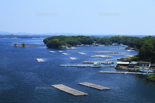 志摩半島の和具浦 真珠養殖場 (c)JP